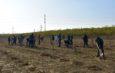 """""""Rotary plantează"""" din nou în Prahova"""